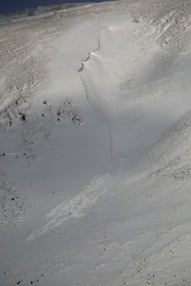 Avalanche debris in what we call Balloon Gully.