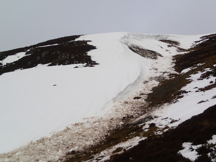 Wet snow avalanche (SE aspect) which released during yesterday's rain.