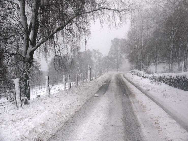 The drive to 'Meggie was also pretty challenging on mostly white roads.