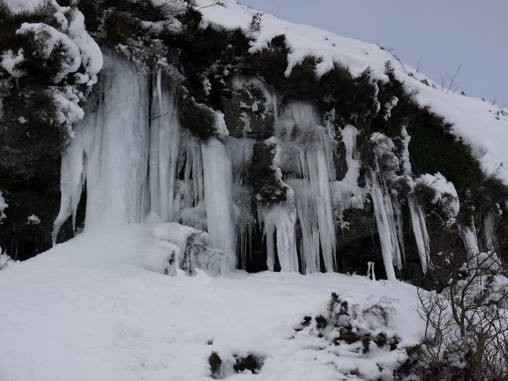 Ice forming at 500m.