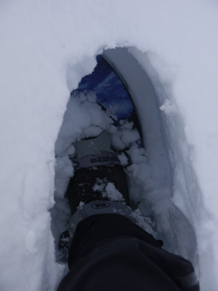 That right foot again, this time with a snowshoe. Still knee deep!