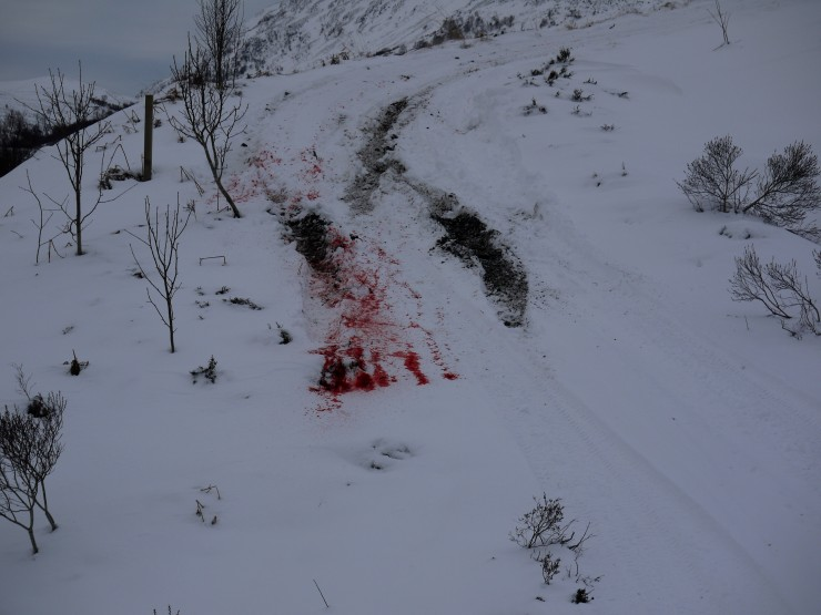 Evidence that SNH Creag Meagaidh stalkers were out shooting last night.