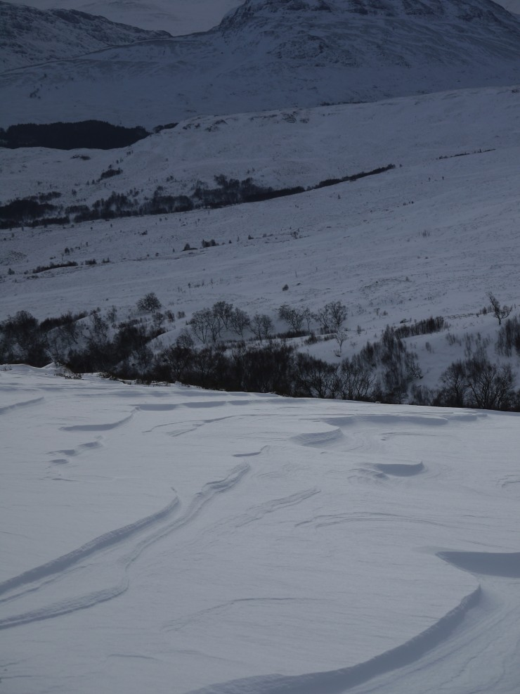 Wind-etched snow