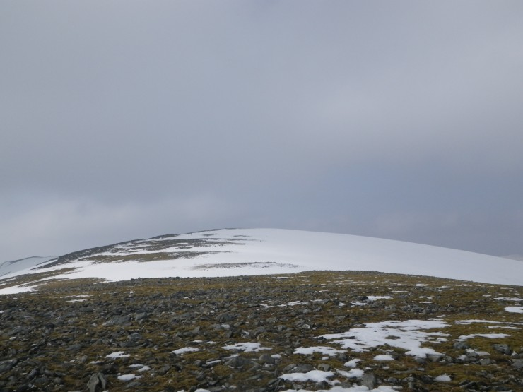 Cover becoming sparse in 'plateau' areas on Cairn Liath side