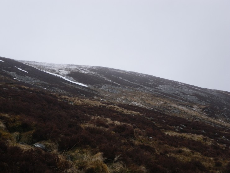 Same elevations as photo above -  Very little cover with only isolated patches below 800m on Cairn Liath Side. Reasonable still at plateau level.
