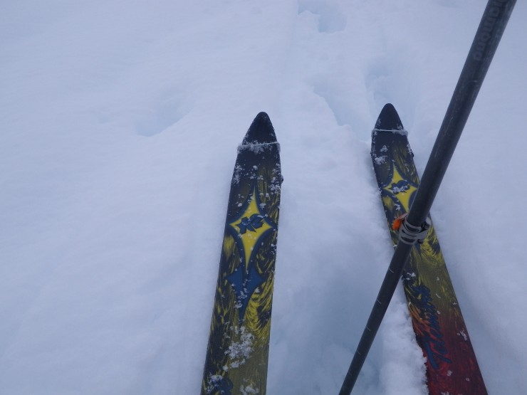 Skis for access