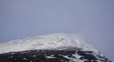 Snow on the tops