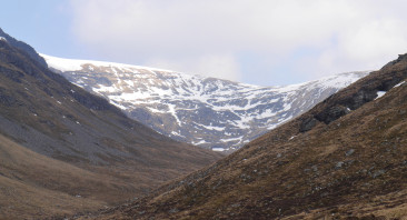 Moy Coire
